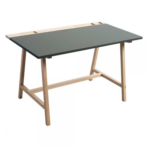 """Schreibtisch """"D1"""" mit Tischplatte in Grün"""