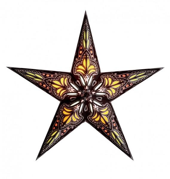 Sternlampion, braun