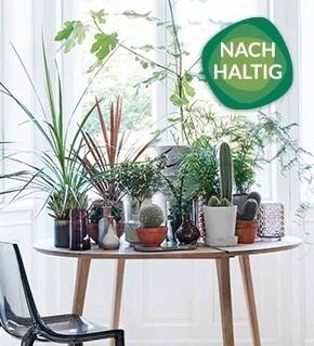 media/image/Collage_Tisch_Holz_Natur_NachhaltigrkIcAyvjCsDCN.jpg